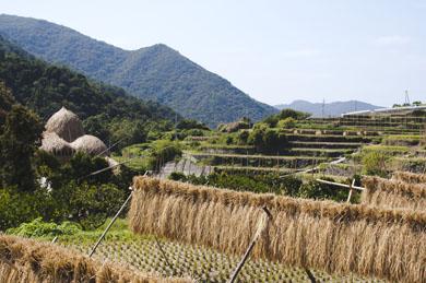 小豆島の家1